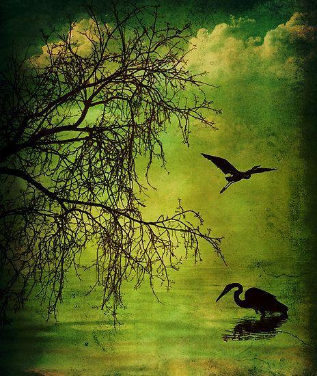 Volim zeleno - Page 32 Tumblr_n8718dDAZM1sg22dvo1_500