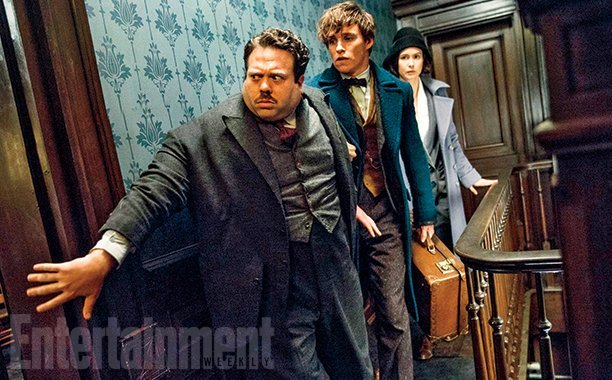 Fantastic Beasts and Where to Find Them, le film - Page 2 Tumblr_o06mtwo7D21roci9qo1_1280