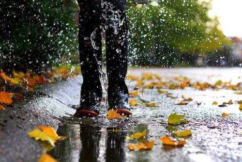 Empieza el otoño. - Página 3 Tumblr_ms800qiFoz1ri2h1ao1_500