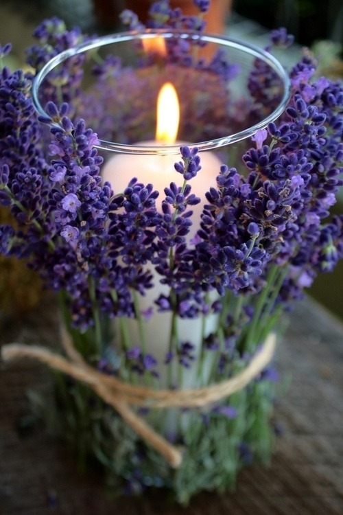 Plamen svijeća - Page 18 Tumblr_n1g0w0YBCU1smwleco1_500