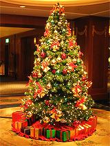 Božićna drvca - Page 3 Tumblr_mxgni8Gi701rmvs4co3_250