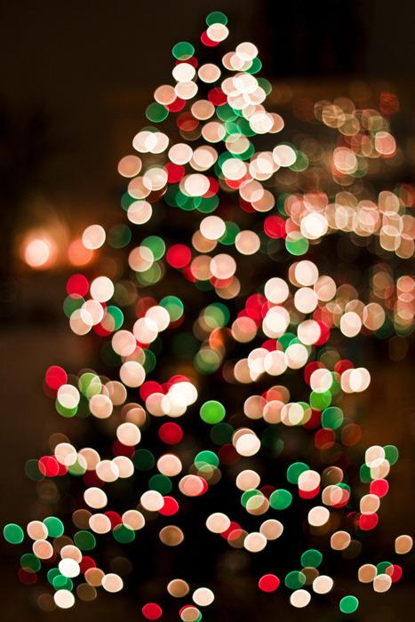 Božićna drvca - Page 3 Tumblr_lvpl4oHE2p1r3ulq2o1_500