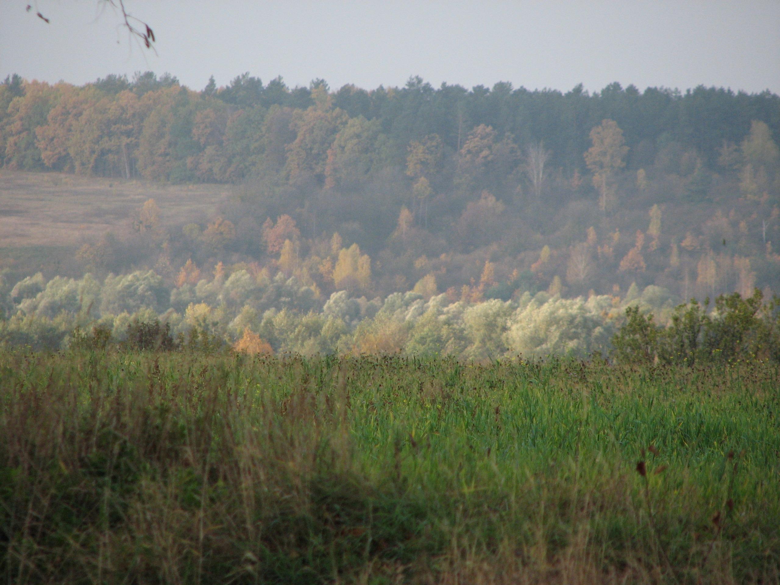 Ода Осени - Страница 2 577249