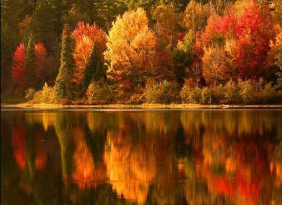 Ода Осени - Страница 2 580235