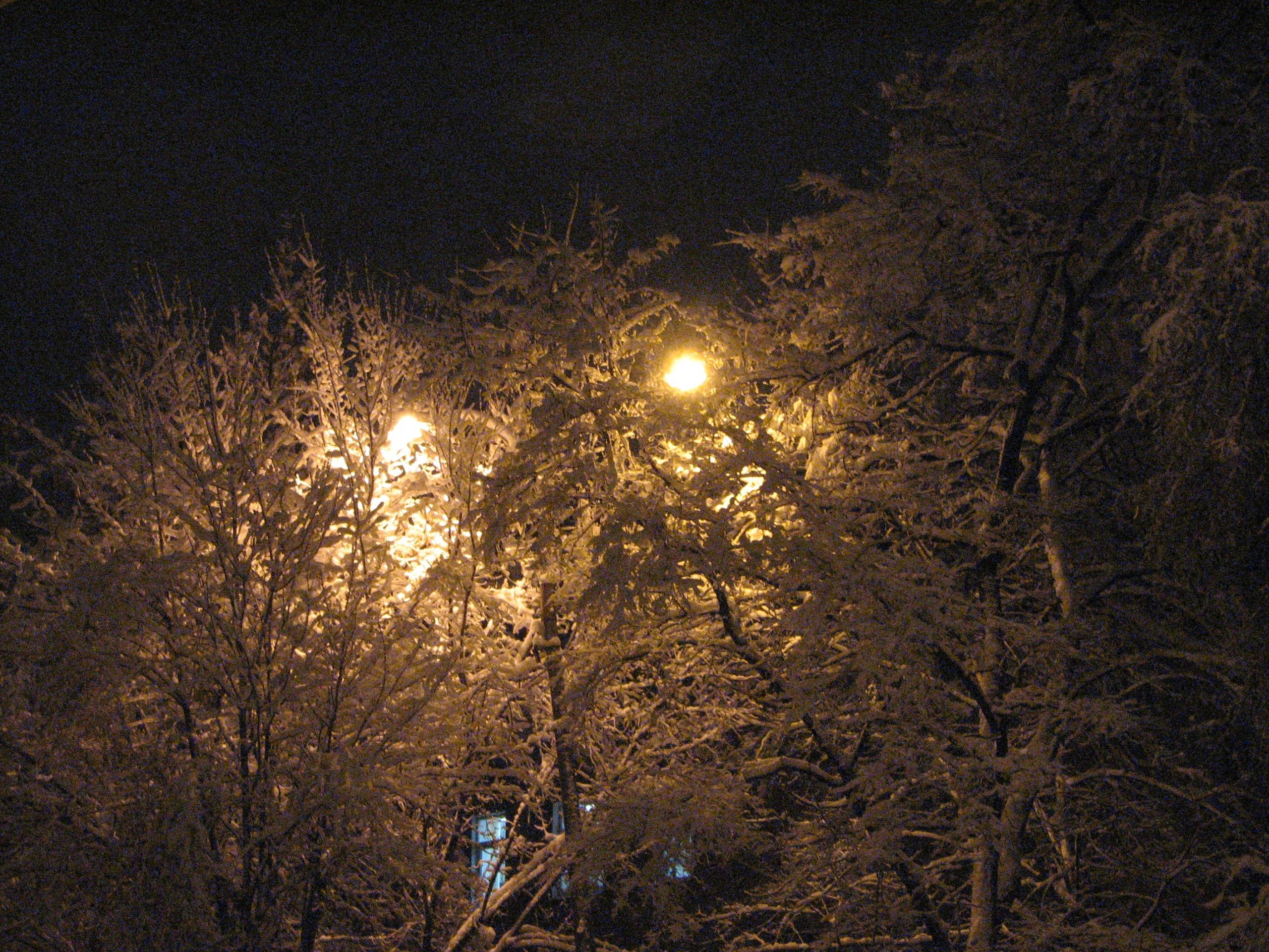 А за окном зима... 767635