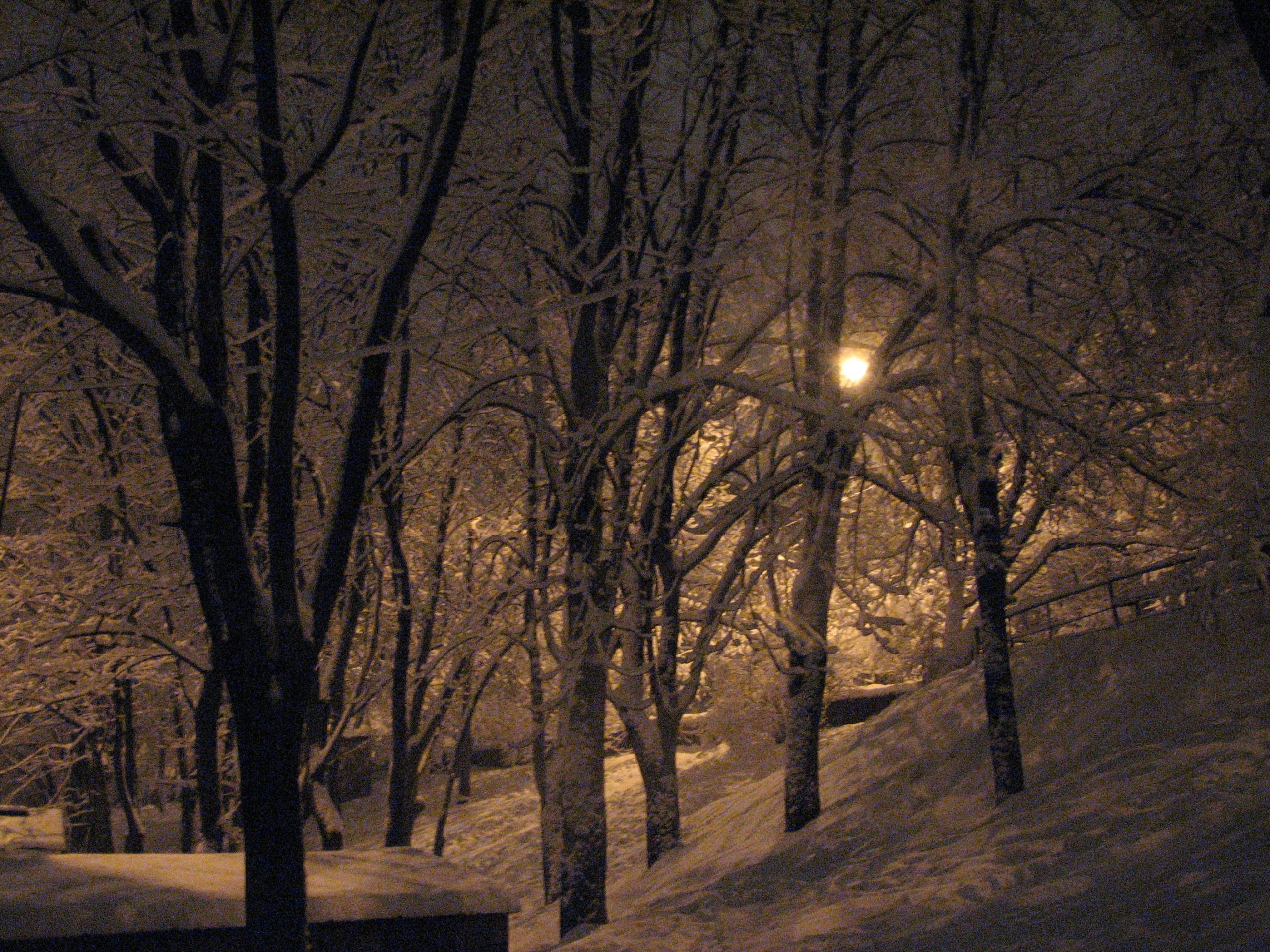 А за окном зима... 767640
