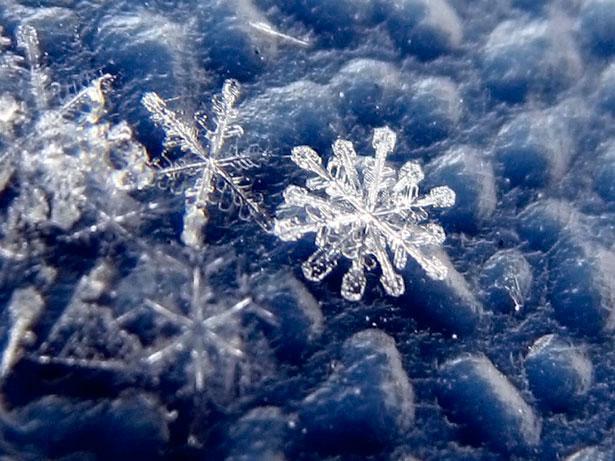 А за окном зима... 782972