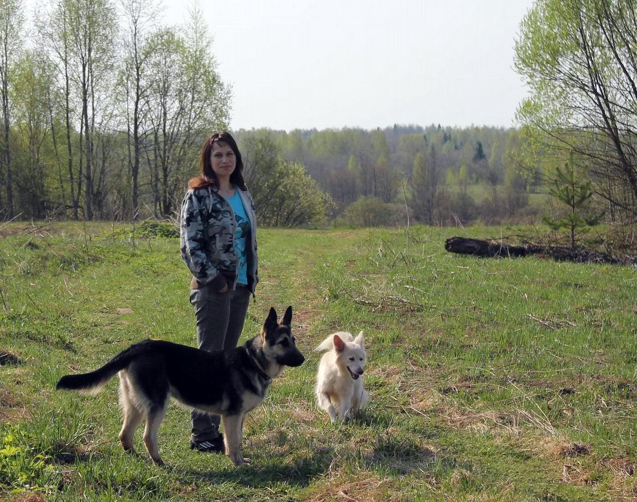 Мои собаки... и не только мои, и не только собаки =) 1884732