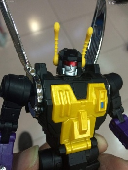 [Fanstoys] Produit Tiers - Jouet FT-12 Grenadier / FT-13 Mercenary / FT-14 Forager - aka Insecticons - Page 3 UrArRD1r