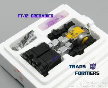 [Fanstoys] Produit Tiers - Jouet FT-12 Grenadier / FT-13 Mercenary / FT-14 Forager - aka Insecticons - Page 2 5hUZo1kf