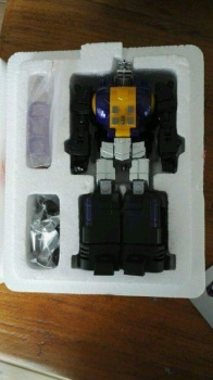 [Fanstoys] Produit Tiers - Jouet FT-12 Grenadier / FT-13 Mercenary / FT-14 Forager - aka Insecticons - Page 2 TA0bQ1kR