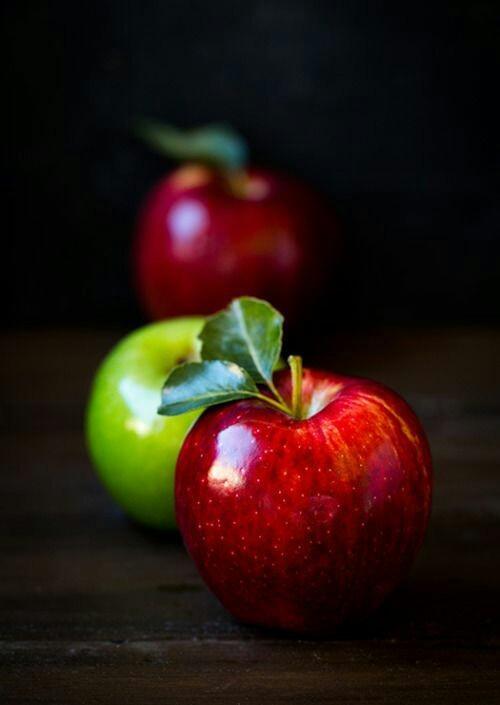 Volim voće - Page 25 Tumblr_og12mv9nK51rmxahho1_500