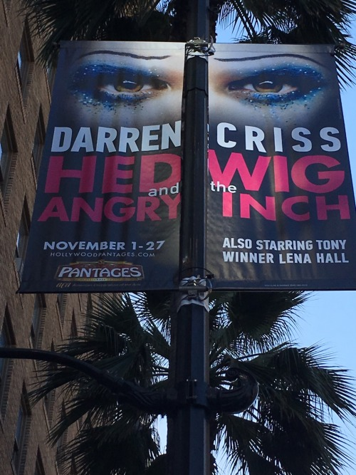 broadway - The Hedwig and the Angry Inch Tour in SF and L.A. (Promotion, Pre-Performances & Miscellaneous Information) - Page 3 Tumblr_odm6ai2fGI1v4tjk5o2_500