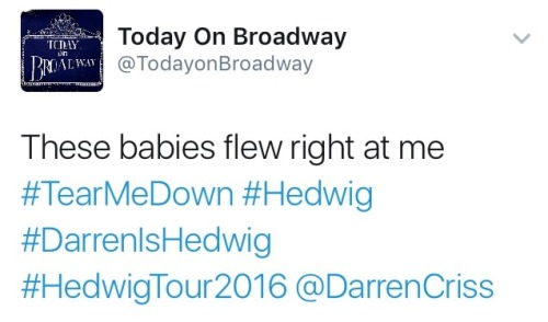 "HedwigAndTheAngryInch - Pics, gifs, media videos, curtain call videos, stage door videos, and posts of ""who saw Darren"" in Hedwig and the Angry Inch--SF and L.A. (Tour),  Tumblr_oeg0zjkQpV1ubd9qxo2_500"