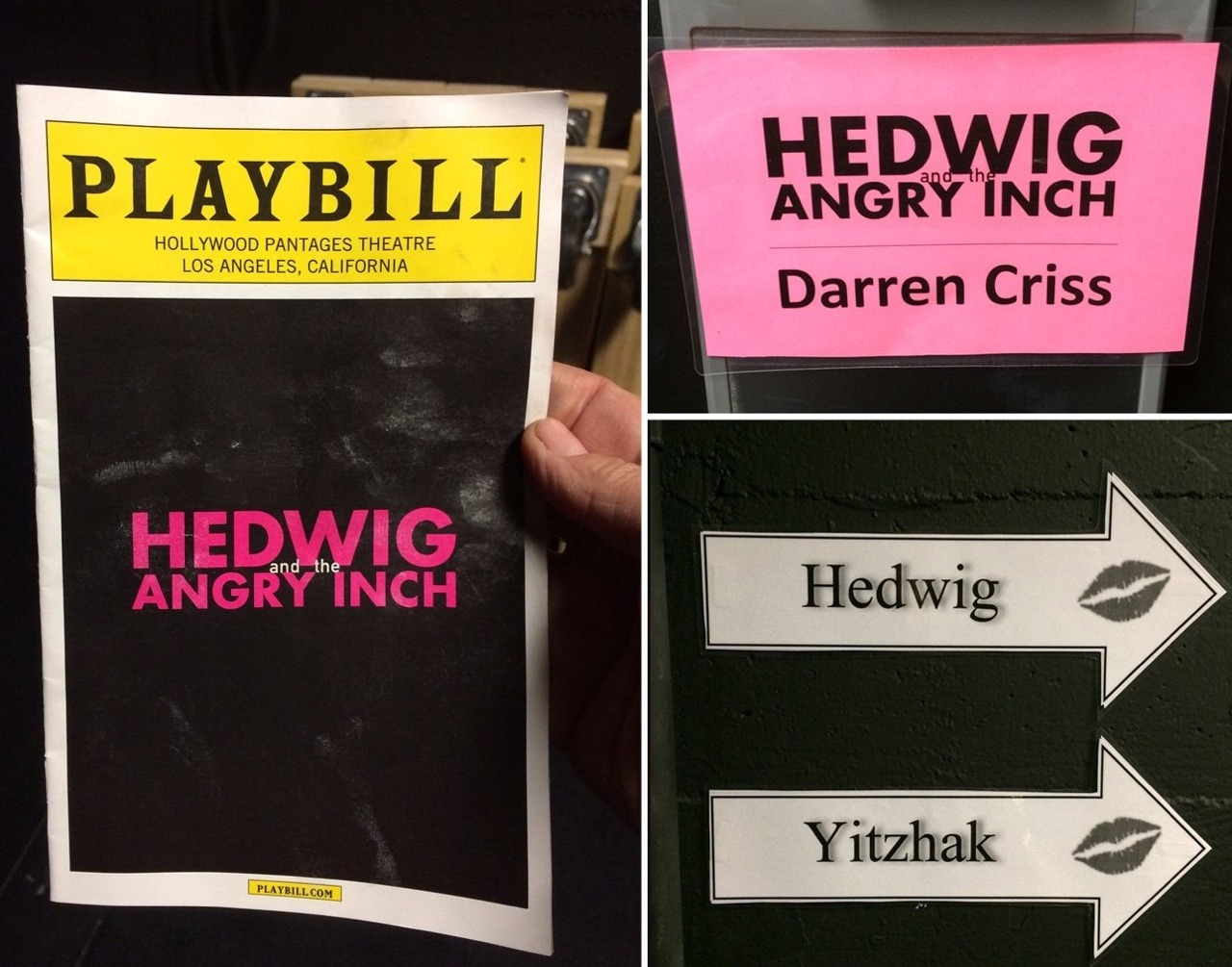 star - Fan Reviews, Media Reviews, and comments from members of the Media, about Darren in Hedwig and the Angry Inch--SF and L.A. Tour  - Page 4 Tumblr_og2u5szW1K1ubd9qxo3_1280