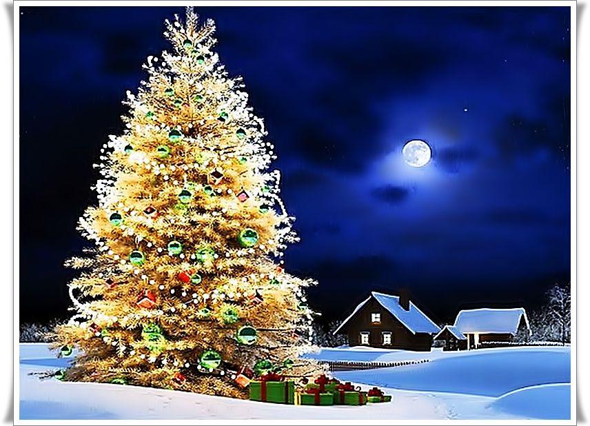 Bộ Sưu Tập Ảnh Giáng Sinh C85aglojd8r6c5n0f