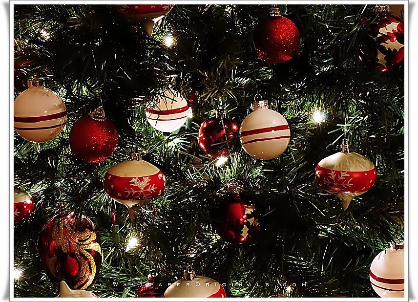 Bộ Sưu Tập Ảnh Giáng Sinh C85agwgu9hcrlanr3