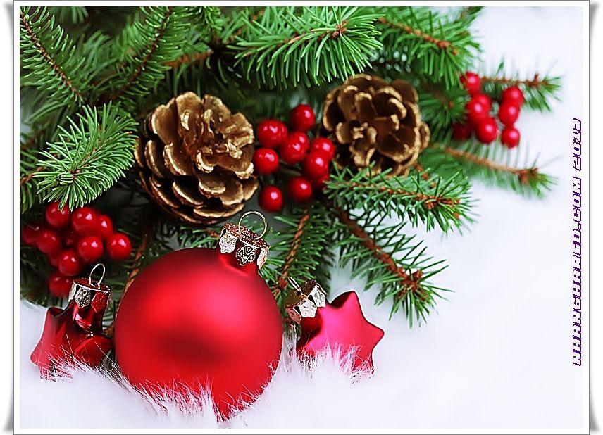 Bộ Sưu Tập Ảnh Giáng Sinh C85avwd5p55burjy7