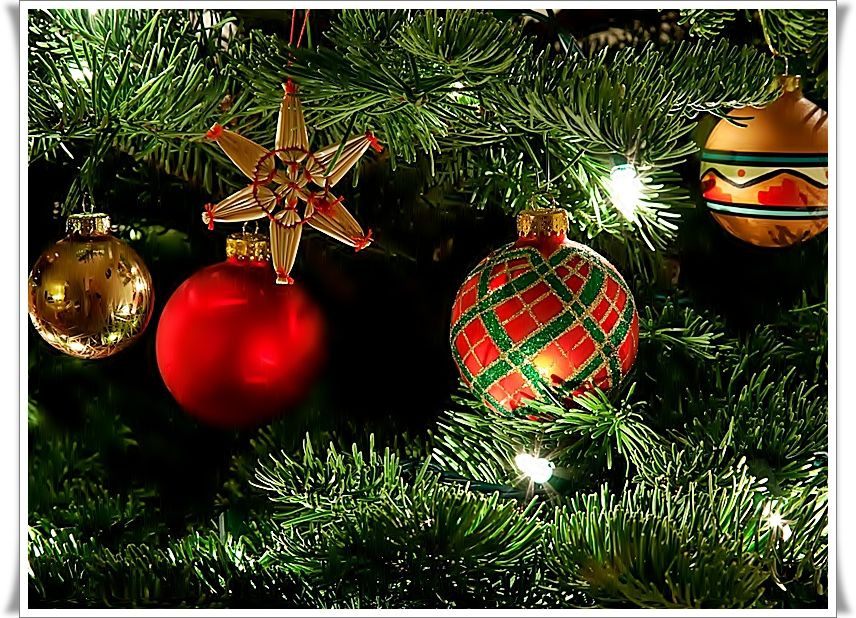 Bộ Sưu Tập Ảnh Giáng Sinh C85b172npvv29g3pb