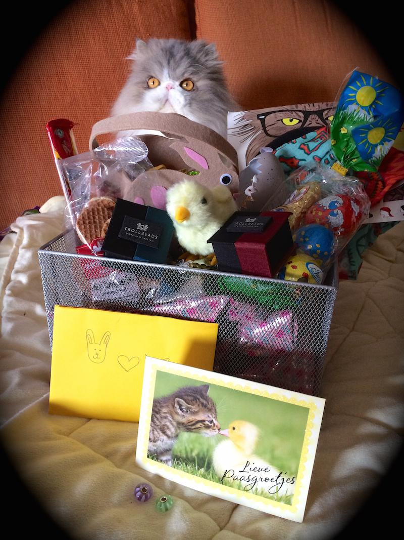 Thoroughly spoiled by a Dutch Easter bunny Cx3w96dcy3n8ihkb9