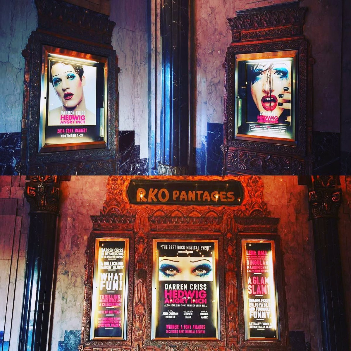 "hedwignationaltour - Pics, gifs, media videos, curtain call videos, stage door videos, and posts of ""who saw Darren"" in Hedwig and the Angry Inch--SF and L.A. (Tour),  - Page 3 Tumblr_of9rsoUEF51uetdyxo1_1280"