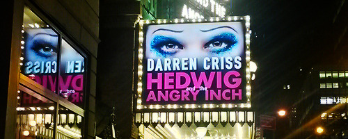 hedwig - Pics and gifs of Darren in Hedwig and the Angry Inch on Broadway. Tumblr_nrr1meB61U1qan42po6_500