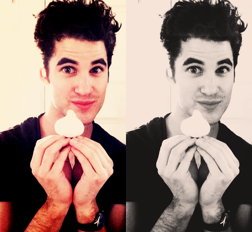 weddingpartyduties - Some of my favorite past photos/gifs of Darren - Page 2 Tumblr_lz4drjaLkp1qcf4gdo1_500