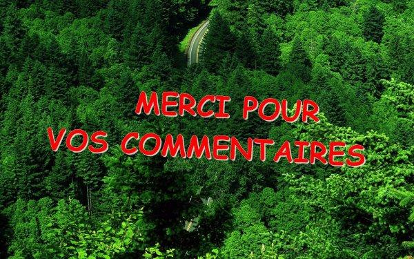 """""""Les souliers de St-Pierre"""" : Un film à regarder ici-même sur le forum 2990963365_1_3_rXDYhwuQ"""