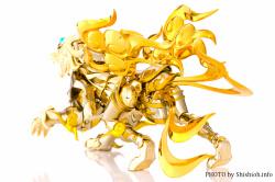 [Comentários] Saint Cloth Myth EX - Soul of Gold Aiolia de Leão - Página 9 7jd2zcmX