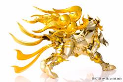 [Comentários] Saint Cloth Myth EX - Soul of Gold Aiolia de Leão - Página 9 JqeNLnlc