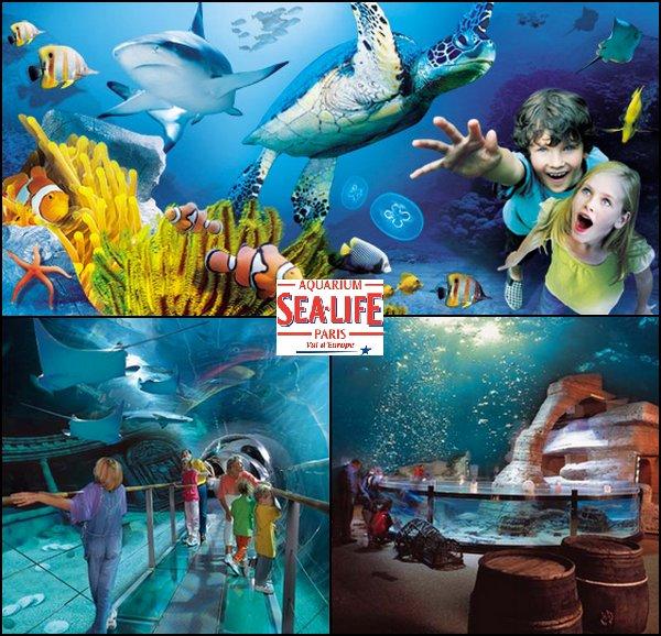 [Centre Commercial] Aquarium Sea Life Paris Val d'Europe (2001) 2797704457_1