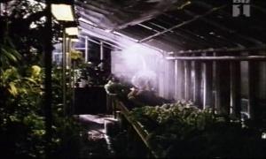 Charlotte Sieling @ Elsker Elsker Ikke... (DK 1995) [VHS]  QkQWhhJb