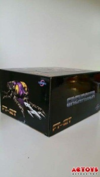 [Fanstoys] Produit Tiers - Jouet FT-12 Grenadier / FT-13 Mercenary / FT-14 Forager - aka Insecticons - Page 2 LshSySzy