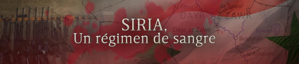 Revolucion en Siria. - Página 40 1315789
