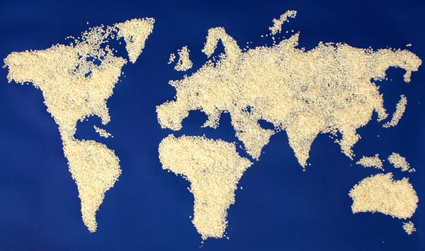 خرائط مجنونة لعالمنا المجنون وكما يقولون الجنون فنون Rice-grain-map