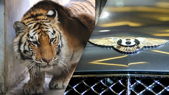 Pet tigers and Bentleys: How NFL players mess up money from the start Espnapi_bently_tiger_plit_576x324_wmain