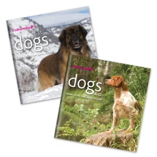 Интернет-магазин Red Dog- только качественные товары для собак! - Страница 7 6d32aefc73c3