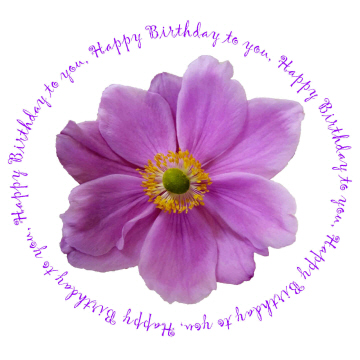 Поздравления! Anenome-happy-birthday-card-135x135mm