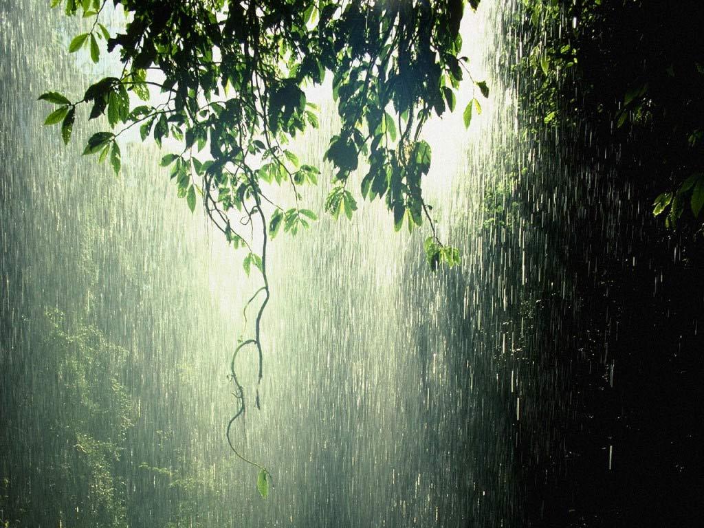 Kineska poezija Its-raining2
