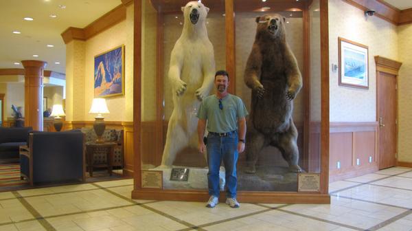 Urso pardo vs Urso polar - Página 2 L