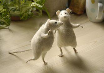 Bon Mercredi Souris-dansent