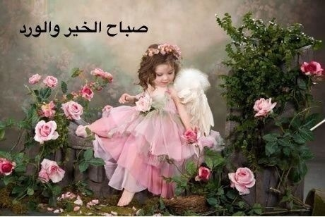 صباح الخير Cb362c94d4cc0da2d7d5ac0e775b1ff7_view