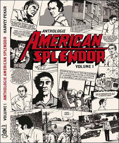 Vos bandes dessinées préférées... - Page 5 American-splendor