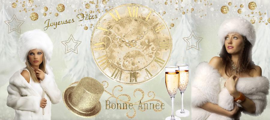 BON MARDI  .. 1er Janvier  2013 Bannieres-nouvel-an