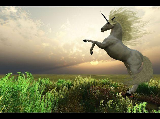 El unicornio Unicornio-real-unicorn-animales-mitos-fantasia-cuentos-mito