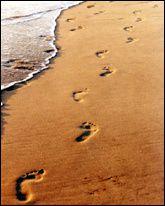 en vrac pour aujourd'hui! Traces-pas-sable