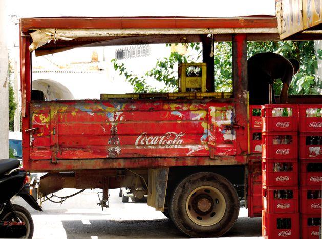 La nature a-t-elle des droits ? Coca-5
