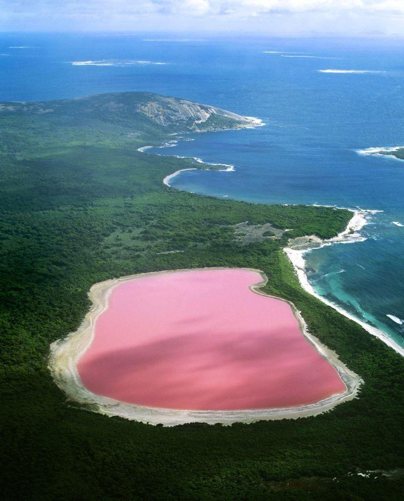 La couleur rose de l'eau du Lac Hillier toujours sans explication... K175