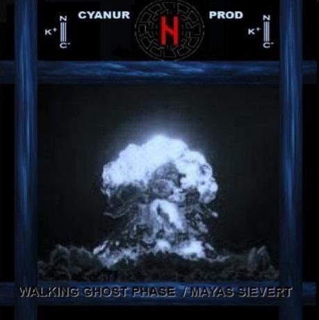 V/A WALKING GHOST PHASE / MAYAS SIEVERT [Cyanur prod CP 014] L
