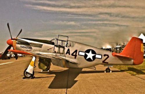 North American P-51 Mustang en quelques mots . Portrait.jpg